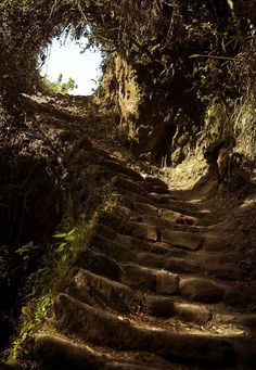 Someday I will walk the inca trail