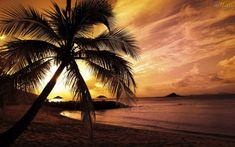 OsMais.com - Papel de Parede Praia - Pôr do Sol - papel de parede ...