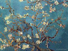 Papel de Parede de Van Gogh Amendoeira em Flor