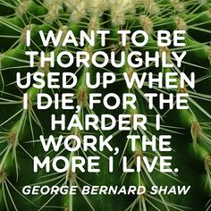 Some people Live to Work, I Work to Live!! Work Harder, Live Life Thoroughly and Enjoy your Spice in Life Today, Tommorow, the Next Day and so on and so on..... Your Life should not be considered, and they Quote... Life is too Short!! By Gerard the Gman in NJ...
