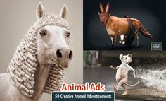 21 Animal themed Print Advertisements and print ads inspiration for you http://webneel.com/best-funny-print-advertisements-ads | Design Inspiration http://webneel.com | Follow us www.pinterest.com/webneel