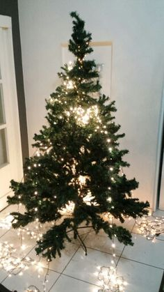 Distribuindo as luzes De♡coração de Natal 2015  Estilo shabby chic com reaproveitamento de materiais by Sandra Dias.Interires