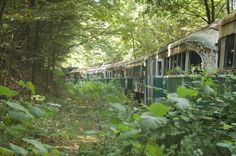 Trolley graveyard in Somerset County, PA ~ incl the old Philly trollley's. Sad and eerie!