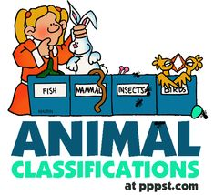 Animal Classifications - FREE Presentations in PowerPoint format, Free Interactives & Games