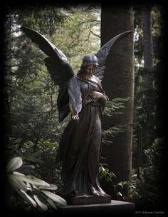 Angel of distress von Reiner Ugele
