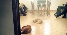 Stray Dogs Suddenly Show Up At Funeral Of Woman Who Spent Her Life Feeding Them   Bored Panda