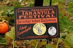 7 Bizarre Festivals You've Probably Never Heard Of