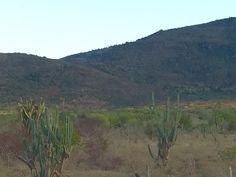 Final da tarde em Tucson no Arizona. Mas os invejosos vão dizer que foi em Milagres-BA.