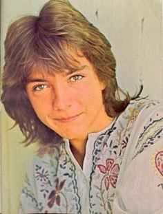 david cassidy i think i love you