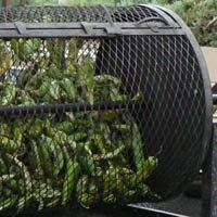 The best smell on the planet-the annual autumnal aromatherapy of roasting green chile all over NM