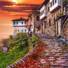 Traditional houses in mount Pilio, Magnesia Prefecture, Thessaly Greece Greece Pictures, Beautiful Places, Beautiful Pictures, Road Trip, Southern Europe, Mediterranean Home Decor, Exotic Places, Wanderlust, Europe Destinations