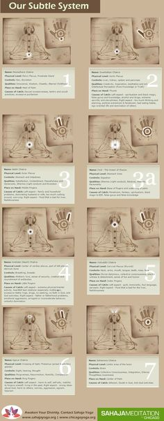 The 7 chakras of our body. #cyclingforbeginnersyogaposes