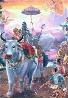 Today is Shani Pradosham. It is observed to seek blessings of Lord Shiva. When pradosh vrat falls on saturday is called as Shani Pradosham. Worship Lord Shiva to lead a blissful life.  www.vedicfolks.com  #ShaniPradosham #PradoshVrat #SaniPradosham #Pradosham