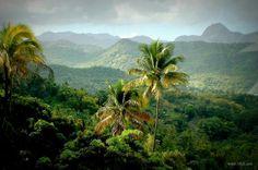 Beauty of my island