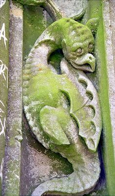 Cathédrale de Chartres - Portail Royal - détail...moss on a carving is a mini garden of it's own.