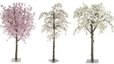 Bloesem bomen groot of klein. info@decoratietakken.nl www.decoratietakken.nl Restaurant, Groot, Plants, Diner Restaurant, Plant, Restaurants, Planets, Dining