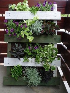 Transform old pallets into space-saving garden containers for your balcony, patio or front porch. A vertical pallet garden looks great both indoors and Vertical Pallet Garden, Vertical Gardens, Pallets Garden, Vertical Planter, Old Pallets, Recycled Pallets, Wooden Pallets, Wooden Fence, Pallet Wood