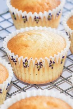 Vanille cupcakes: den perfekte vanille cupcake opskrift! Vanille Muffins, Vanille Cupcakes, Dessert Cake Recipes, No Bake Desserts, Cupcake Cookies, Mini Cupcakes, Mini Muffins, Sweet Recipes, Baking Recipes