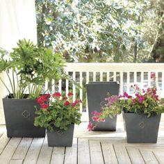 Classical + modern.  Love these quatrefoil pots!