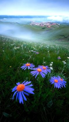Cool Pictures Of Nature, Beautiful Flowers Pictures, Beautiful Photos Of Nature, Nature Photos, Beautiful Landscape Wallpaper, Scenery Wallpaper, Beautiful Landscapes, Nature Aesthetic, Nature Photography
