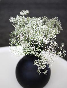baby's breath in a black vase