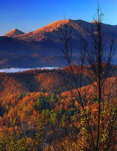 Autumn view of Falakro Mt.(Greece) from the Rhopode mountain range Seasons Of The Year, Best Seasons, Forest Mountain, Mountain Range, Greek Flowers, Visit Greece, Lovely Smile, Autumn Nature, Falling Leaves