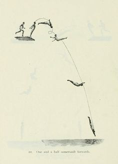 Diagrams showing the trajectory of the major dives as performed at the 1912 Olympics in Stockholm x