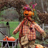 Un épouvantail à la tête en citrouille - Scarecrow
