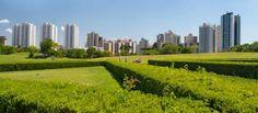 Ciudades Verdes trabajan por la Tierra