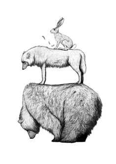 http://lespapierscolles.wordpress.com/2013/04/30/amy-dover/  Amy Dover #illustration #drawing #animal #art #graphisme