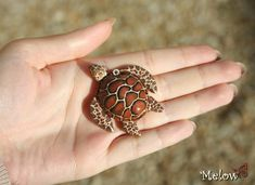 Turtle Fimo/polymer clay by Melow-Fimo