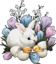 Bunny and Chicks Hatching in Spring cute spring babies rabbit tulips bunny eggs chicks spring flowers hatch Raccoon Art, Chocolate Rabbit, Orthodox Easter, Happy Easter Everyone, Spring Pictures, Glitter Graphics, Egg Hunt, Beautiful Paintings, Easter Crafts