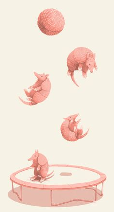 Trampoline armadillo - by Jillian Nickell Street Art, Armadillo, Grafik Design, Photomontage, Storyboard, Concept Art, Art Drawings, Illustration Art, Logo Design