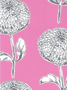 showstoppers clarke & clarke - pretty dahlia wallpaper on a pretty pink background #pink #pinkwallpaper #dahlia #homedecor