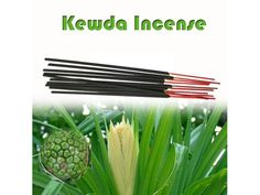 Kewda incense is known for its strong fragrance http://vedicvaani.com/Kewda-Incense are made from essential oils. It's prepared by hand and rolled in a blend with natural ingredients including herbs, oils and natural plant resins. A more traditional style of incense, so it goes a long way.We use the finest botanical ingredients- herbs, gums, resins, rare spices, natural powders and blend with premium Natural Products  & essential oils.