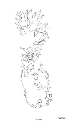 "blind contour drawing ""La Pina"" debyagerart.com"