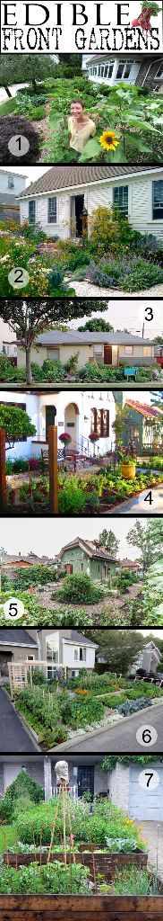 Best front yard edible gardens