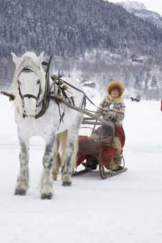 Dashing through the snow from the Norwegian blog Livs Lyst