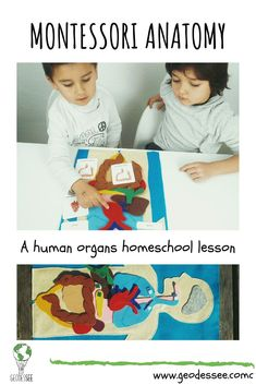 The human body is truly a mystery to the child's mind and having an in-depth human anatomy lesson is a great way to delve into the human organs and other fun human body topics. Science Education, Teaching Science, Teaching Kids, Kids Learning, Science Resources, Senses Activities, Preschool Learning Activities, Montessori Science, Montessori Homeschool