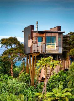 Hapuku Lodge Tree Houses, New Zealand Nestled in the canopy of a Kanuka grove with views of Kaikoura mountains, these naturalistic tree houses draw inspiration from their magnificent surroundings. Luxury Tree Houses, Cool Tree Houses, Amazing Houses, Small Houses, Tree House Drawing, Treehouse Hotel, Tree House Designs, In The Tree, Architectural Digest