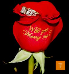 Tomorrow is Proposal Day! What's the most romantic marriage proposal story that you've ever heard?
