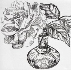 Single Rose - Signed Original floral hand pulled black and white Etching : Francesca Whetnall
