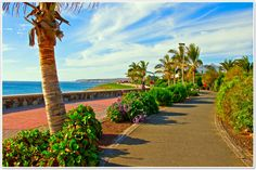 Photo about Promenade or walkway at Maspalomas Beach on Gran Canaria island in the Canary Islands. Image of coastline, colorful, foliage - 4155568 Hiking Routes, Hiking Guide, Places In Spain, Ibiza Beach, Travel Flights, Away We Go, Beach Images, Canario, Canary Islands