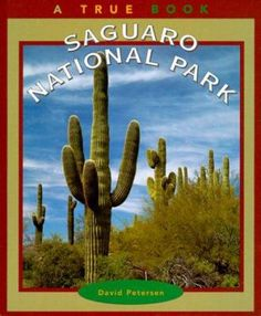 Saguaro National Park