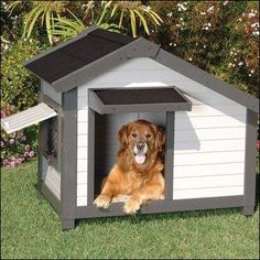 Cozy Cottage Luxury Dog Home Dog Crate traditional pet accessories - Dog Kennel Cheap Dog Kennels, Luxury Dog Kennels, Cheap Dog Houses, Luxury Dog House, Plastic Dog House, Wood Dog House, Dog Kennel Designs, Miniature Dogs, Old Pallets