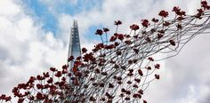 The Shard appears to be hiding behind a blossoming branch, by Julie Hutson Photography Competitions, Photography Awards, Waterloo Station, The Shard, Cool Landscapes, Landscape Photographers, Britain, Celebrities, Travel