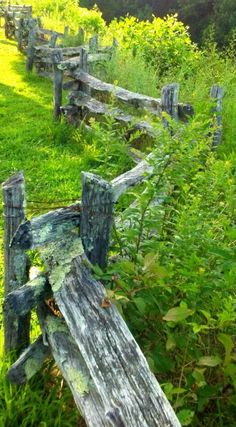 Luv these fences