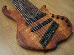 12 string bass guitar