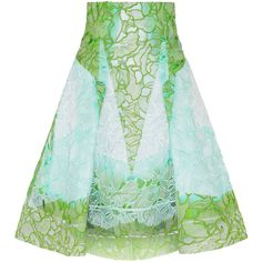 Peter Pilotto Radial cutout embroidered silk-gauze skirt ($1,350) ❤ liked on Polyvore featuring skirts, bottoms, peter pilotto, юбки, green, knee length pleated skirt, cut out skirt, peter pilotto skirt and silk skirt