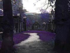 Covenanter's Prison, Greyfriar's Kirkyrd, Edinburgh, Scotland